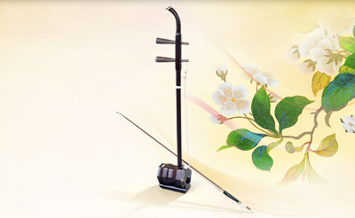 Chinese Musical instrument Erhu