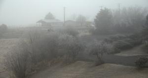 第一天,我们到达了俄勒冈州,到达时晨雾笼罩著山谷。(Annie Li) 俄勒冈小道长2000英里,连接密苏里河与俄勒冈州的山谷。 (Annie Li)