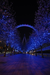 It was already dark by the time we stepped off the London Eye, but the view was no less amazing. (TK Kuo)