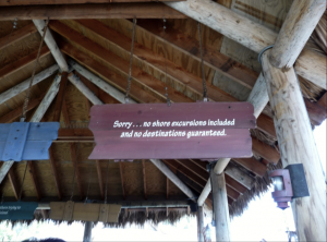 A disclaimer placed right before we got on the ride.