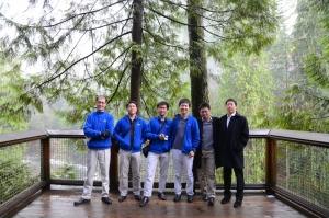Orchestra in cima agli alberi. (Nikon D7000)