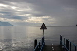 Have you seen this guy around? (Lake Geneva at Montreux, Switzerland)