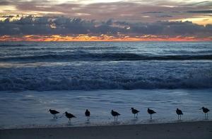 플로리다 멜버른 해변. (photo by projectionist Annie Li)
