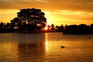 ... Dan berjalan kaki saat matahari terbenam sepanjang Langley Park. (Foto oleh penari Mark Kao)