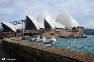 Kunjungan ke Sydney Opera House, dan momen yang damai dan harmonis ... (foto oleh penari Ben Chen)