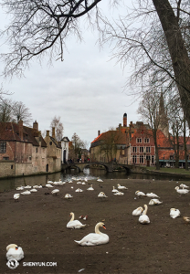 More Bruges. (photo by projectionist Annie Li)