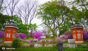 Gardens inside the Gyeongbokgung Palace. (photo by dancer Jun Liang)