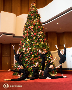 The first week of tour usually straddles Christmas. Here, in Houston, a few dancers add ornamentation to the Christmas tree. (Photo by projectionist Annie Li)