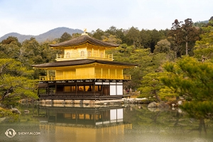 You might recognize this one from a popular Mac homescreen image. Or you could make it yours. Kinkaku-ji Temple in Kyoto. (photo by Japan-raised Principal Dancer Kenji Kobayashi)
