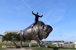 The group also performed in San Antonio, Texas, at the Tobin Center for the Performing Arts. Here's Principal Dancer Emily Pan on a Buffalo in San Antonio. Because - why not? (Photo by Kaidi Wu)