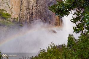 Lily Wang was determined to get close enough, safely, to Bridalveil Falls to capture this rainbow. She got soaked from the spray in the process, but it was worth it.