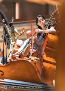 Mighty instruments, mighty musicians. Hui-Ching Chen and the double bass section.