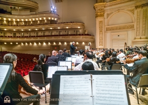 What Carnegie Hall looks like from the point of view of a double bassist.