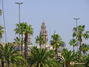 Interestingly, most of the palm trees spotted throughout the area are not actually native to Barcelona. (Photo by Tony Zhao)