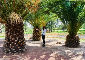 At Africam Safari Park in Puebla, singer Rachel Bastick stands between trees that look like giant pineapples.