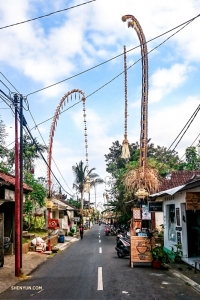 A colorful, vibrant street in Ubud, Bali.