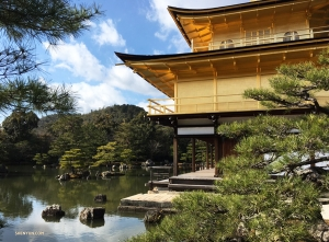 Dancer Betty Wang decides to check out the Kinkaku-ji (the Golden Pavilion), in Kyoto.