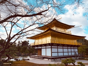Next stop: Kinkaku-ji, or Golden Pavilion. (Photo by Lily Wang)