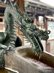 Gregory Xu sont également heureux de visiter le célèbre Pavillon d'Or.<br />Le paysage, calme et magnifique, qui entoure le