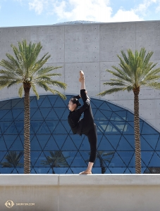 Meanwhile, dancer Zoe Jin competes with the height of the palm trees outside the Mahaffey Theatre in St. Petersburg, FL. (Photo by Kaitlyn Chen)