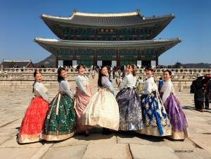 Artystki z orkiestry Shen Yun ubrane w hanbok w pałacu Gyeongbokgung.
