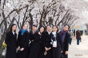 A line of blossoming cherry trees provides a perfect background for a group shot. (Photo by dancer Stephanie Guo)