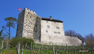 Built around 1020, the fortress has changed a lot since. Today, there is a beautiful vineyard outside and a restaurant inside.