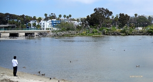 <p>Au port de Dana Point en Californie, le ténor de la Shen Yun International Company,Gao Liang, partage une collation avec les oiseaux. (Photo d' Annie Li, ingénieur projectioniste)</p>