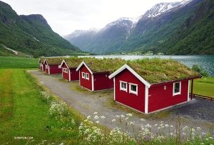 Holiday cabins on the way to the Briksdal Glacier in Norway. (Photo by Kexin Li)