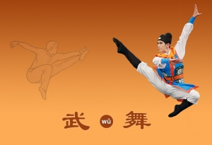 Martial Arts Vs Ccd