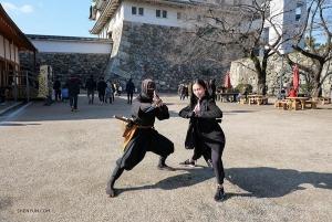 Классический китайский танец и китайские боевые искусства похожи, как братья, давно потерявшие друг друга. Спросите об этом солистку Мишель Лянь и этого ниндзя.