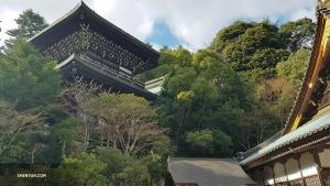 Une pagode majestueuse surplombe les arbres sur l'île d'Itsukushima.