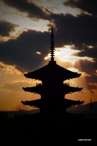 In Kyoto, Japan, Shen Yun New York Company dancer Tony Zhao captures the Toji Temple at sunset.