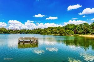 Parken Ibirapuera liknar Central Park i New York genom att den förser en med en grön oas mitt i staden. (Foto: Tony Xue)