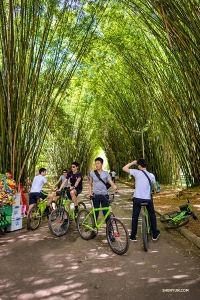 Dancers make a pit stop under some Brazilian bamboo trees. (Photo by Tony Xue)