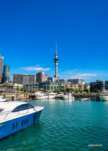 Some of the performers take a stroll down to the popular Queens Wharf in Auckland to take a look around.  (Photo by Tony Xue)