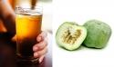 Melon Crop2