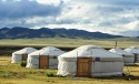 Mongolian Thumb